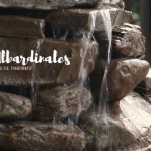 albardinales-1